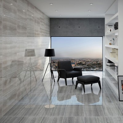 Eramosa Ice Polished Porcelain Wall And Floor Tile 300x600