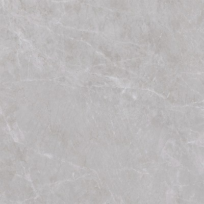 Sensity Grey Polished Porcelain Floor Tile 600x600